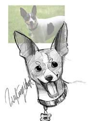 Practice Sketch: Disney Dogs by LaufingIdiot