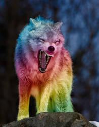 Rainbow wolf by Devilshort