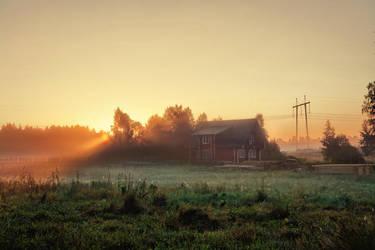 Morning sun by dSavin