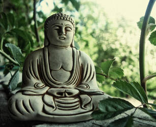 The Teachings Of The Buddha Are Everywhere by Valdis108