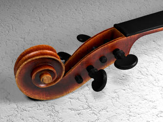 Violin scroll - stained by casteeld