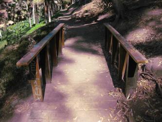 Bridge by wiki-diki-dok