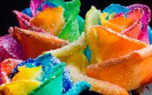 Happy Roses Rainbow Glitter by RAINBOWedROSES