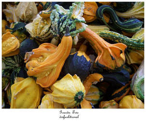 Gourds II by disFUNKtional
