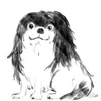 Dog by MasanoEshi