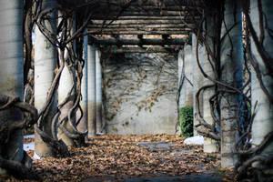 wonderful walkway by saverysauce