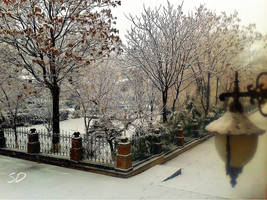 Blue mosque garden in Yerevan by davo83