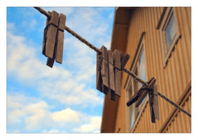 Hanging on the Line by xuvi