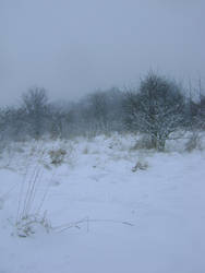 snowy fields -fog- 86 by dark-dragon-stock