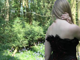 corset stock 12 by dark-dragon-stock