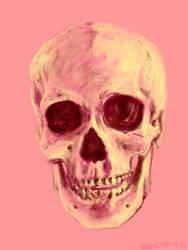 pink skull 10 04 11 by Zasio