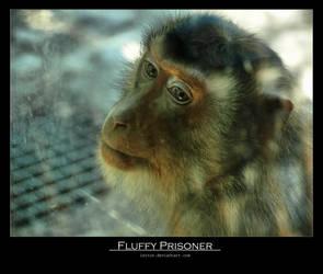 Fluffy prisoner by Leitor