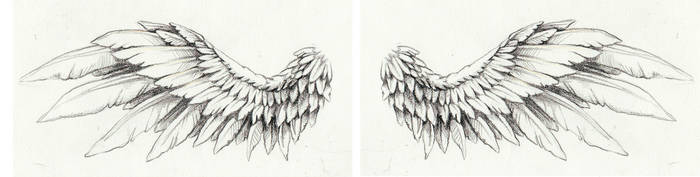 wing tattoo by Kittencaboodles