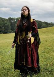 Druchii Costume (Larp) by FrolleinFuchs