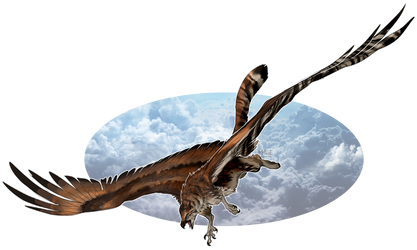 [COM] - Sky Raptor by M4WiE