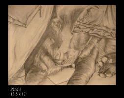 Ap studio art exam 3 by Mintowolf