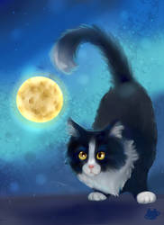 Cat Painting Practice 3 by cosmocatcrafts