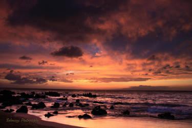 Maui Orange by boborazzi