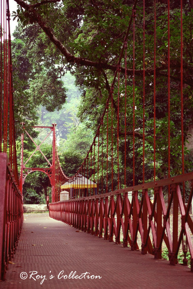 The Golden Gate of Bogor... by RoyWicaksono