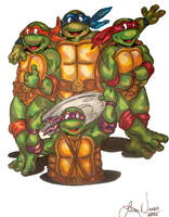 Teenage Mutant Ninja Turtles by wondergurly07