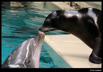 Kiss tastes fishy by Lunchi