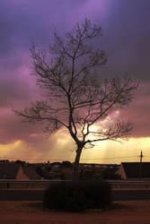 Suburban Sunset by erene