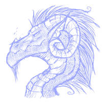 dragon sketch by Kehara
