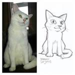 White Neko Sketch by Banzchan