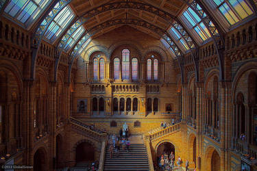 The Natural History Museum by globalsinner