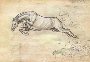 Leap speedrawing sketch by GalopaWXY