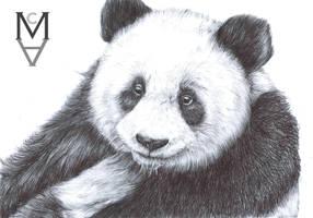 Panda by sarah-mca-art