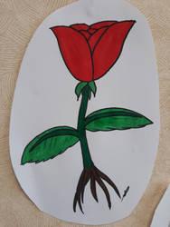 Flower by sobloom