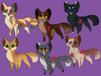 Kitty Adopts 4/6 open by Featherfluffs