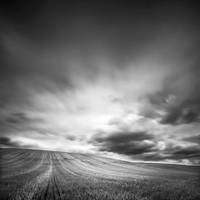 Over the fields by Loran31