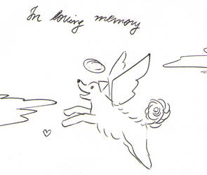 In Loving Memory by cassannder