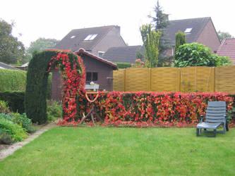 Our romantic -cough- garden by L-a-u-r-a