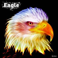 Eagle by Oceandeep76