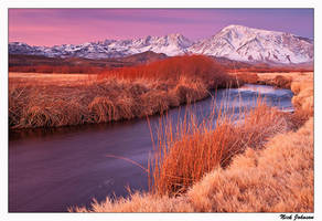 Owens River Dawn by collectiveone
