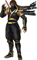 Ryu Hayabusa DOA 5 Official Stance by EnlightendShadow