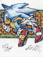 sonic the hedgehog by I-CyBeR-NeTiCs-I