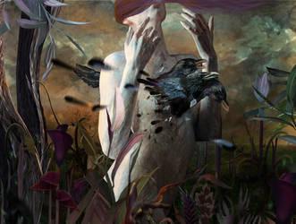 Birds by Madink2000