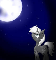 The Night is so Beautiful! by StarPony22