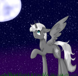 The Night is so Beautiful ( Remake) by StarPony22