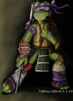 Donatello mixmatch by CreationsByTiffany