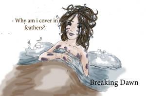 breaking dawn - feathers by Griselibiris
