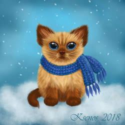 A red-haired kitten by Ksenos-ks