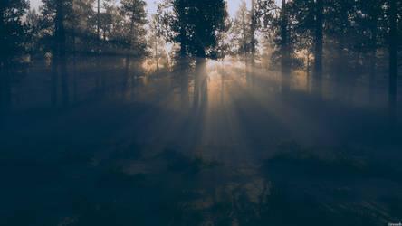 Dichter Wald by Bonvanello