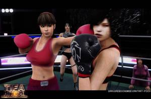 Dead Fantasy Boxing: Tifa Vs Hitomi [1] by gravureboxing
