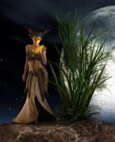 Beautiful Elfin by Eyesblue62