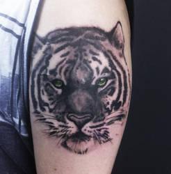 small tiger by dugazm